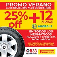 R33 Neumáticos